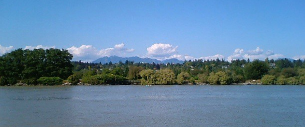 Fraser River Shore, July 19, 2005
